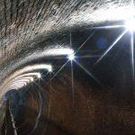 LED Lighting Edgbaston Tunnel